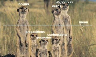 meerkats_v2